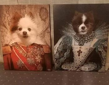 Canvasist Royal Princess Pet Canvas Review