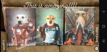 Canvasist Petpool Pet Canvas Review