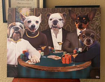 Canvasist Poker Table Pet Canvas Review