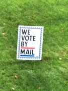 Dissent Pins We Voted by Mail Yard Sign Review