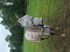 Performance Horse Blankets Horseware Mio Fly Sheet Review