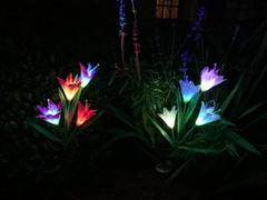 Next Deal Shop 2 Pcs Solar Powered LED Flower Stake Set Review
