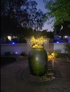 Next Deal Shop Solar-Powered LED Firework Garden Stake Review