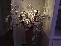 Next Deal Shop 2 Sets LED Decorative Twig Light Review