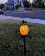Next Deal Shop Solar-Powered Pineapple Stake Light Review