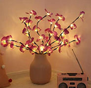 Next Deal Shop LED Orchid Branch Light Review