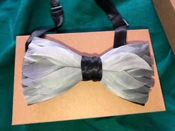 Bow SelecTie Green Feather Bow Tie Review