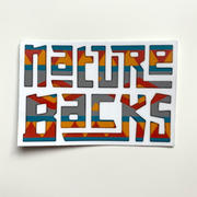 Nature Backs  (2) Aztec Stickers  Review