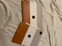 fishskyn Indy (iPad Skin) Review