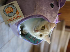 The Cat Ball Lavender unicorn Cat Ball cat bed with rainbow mane Review