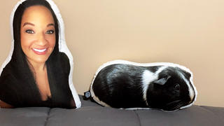 All About Vibe Custom Guinea Pig Pillow Review