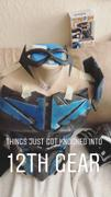 Tiger Stone FX New 52 comic inspired Nightwing / Red Robin mask -  (can be made in many colors) Review