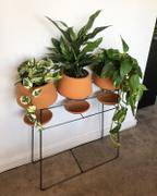 Holistic Habitat  Set of 3 Natural Clay Funnel Pots on Wire Console Review
