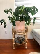 Holistic Habitat  Round Cane Tray Table Review