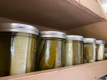 DIG + CO. Canning Pickles: Digital LIVE Canning Workshop with my mom / September 13, 2020 Review