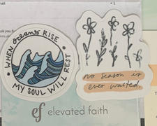 Elevated Faith Mystery Sticker Review