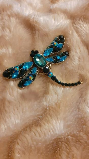 Boots N Bags Heaven Vintage Jeweled Crystal and Rhinestone Dragonfly Brooch Review
