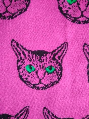 Boots N Bags Heaven Fabulous Cat Print Knitted Sweaters Review