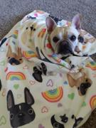 French Bulldog Love LOVE IS LOVE French Bulldog Fleece Blanket - Large Review