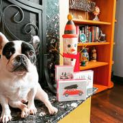 French Bulldog Love Holiday Buggy - French Bulldog Holiday Card Review
