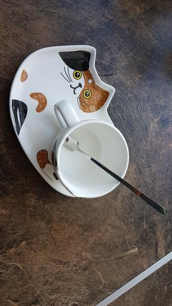 Galaxy Teez Ceramic Cat Coffee Mug and Cookie Plate Set Review