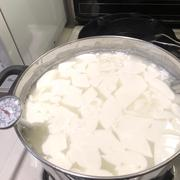 New England Cheesemaking Supply Company 30 Minute Mozzarella & Ricotta Kit Review