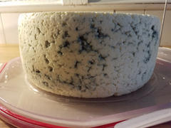 New England Cheesemaking Supply Company Hard Cheese Mold (Large) Review