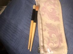 Coastal Scents Natural Beauty Brush Set Review