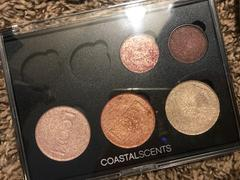 Coastal Scents Empty Palette: 3 Blushes and 4 Shadows Review