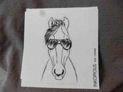 Inkopious Rio the Horse - Decal Sticker Review
