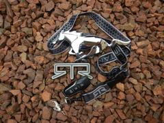 mountune RTR Lanyard Review