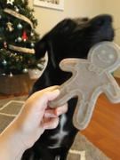 Woof N' Wag SodaPup Nylon Gingerbread Man Review