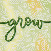 Dawn Nicole Lettering Shop The Floral Lettering Procreate Brush Kit Review