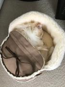 Napping JoJo Sherpa Moccasin Cat Bed in Mocha Suede Review