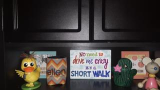 The Ellen DeGeneres Show Shop Ellen Show Chevron Koozie Review