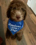 WagSwagCo Handsome Motha Fluffa Bandana - Color Options Avail. (No Personalization) Review