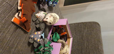 The Hoghouse TOY BUNDLE #1: Toys for hedgehogs. Set of 4 or 8 fleece toys. Review