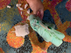 CaliConnected PrideBites Indestructible Weed Leaf Dog Toy Review
