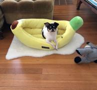 Nandog Pet Gear Banana Bed Review