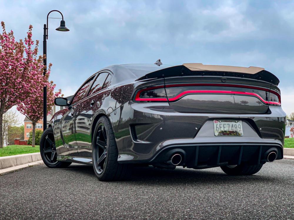Bc Racing Coilovers Dodge Charger Challenger Srt8 Rwd 2011 2019 Redline360