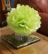 tableclothsfactory.com 12 Pack 10 Apple Green Paper Tissue Fluffy Pom Pom Flower Balls Review
