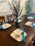 tableclothsfactory.com 30 Black Glittered Manzanita Centerpiece Tree + 8pcs Acrylic Chains Review