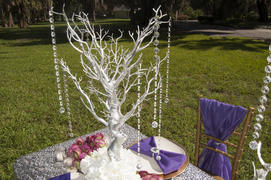 tableclothsfactory.com 30 Metallic Silver Manzanita Centerpiece Tree + 8pcs Acrylic Chains Review