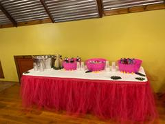 tableclothsfactory.com 14FT Fuchsia 4 Layer Tulle Tutu Pleated Table Skirts Review