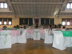 tableclothsfactory.com 5 PCS | 6x106 Apple Green Crinkle Crushed Taffeta Chair Sashes Review
