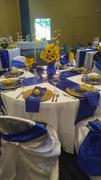 tableclothsfactory.com 5 PCS | 6x106 Royal Blue Crinkle Crushed Taffeta Chair Sashes Review