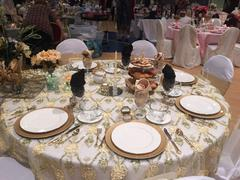tableclothsfactory.com 72 x 72 Champagne Lace Netting Extravagant Fashionista Style Table Overlay Review