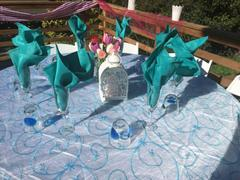 tableclothsfactory.com 85 x 85 Turquoise Satin Edge Embroidered Sheer Organza Square Table Overlay Review