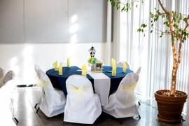 tableclothsfactory.com White Polyester Banquet Chair Covers Review