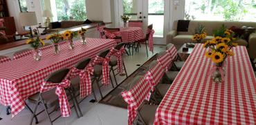 tableclothsfactory.com Gingham Chair Sashes | 5 PCS | Red/White | Buffalo Plaid Checkered Polyester Chair Sashes Review